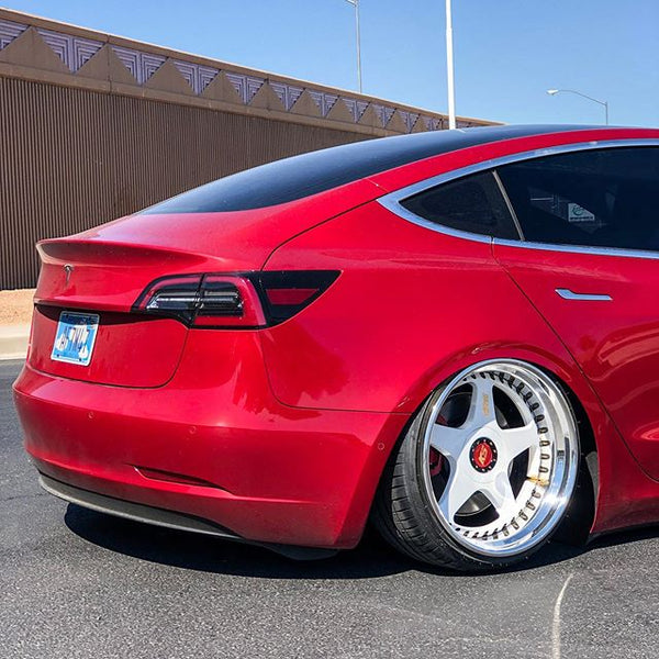 """This """"Bagged"""" Tesla Model 3 Goes Viral In A Jiffy"""