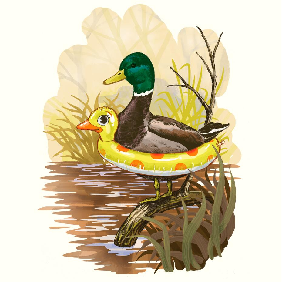 Artokingo - Duck in Training Creme T-Shirt by Steven Rhodes