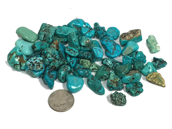 Large Kingman & Evans Natural Turquoise Nuggets 2 oz - WoodWorld of Texas