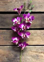 "ITEM 00941 LV - 33"" LAVENDER COATED ORCHID SPRAY W / 8 FLWRS & 4 BUDS"