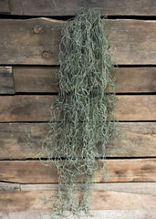 "ITEM 11234 - 32"" ARTIFICIAL SPANISH MOSS HANGING BUSH"