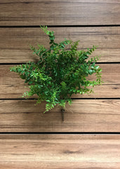 "ITEM 11263 - 18.5"" FERN BUSH"
