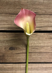 "ITEM 00720 CM PK - 29"" CREAM / PINK LARGE LATEX CALLA LILY--12 PIECES PER BOX"