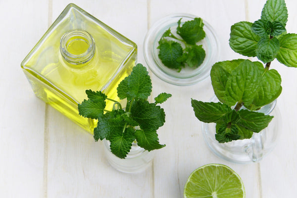 How to use Peppermint Essential Oil