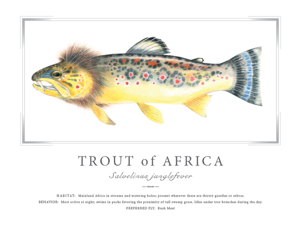 Trout of Africa Print