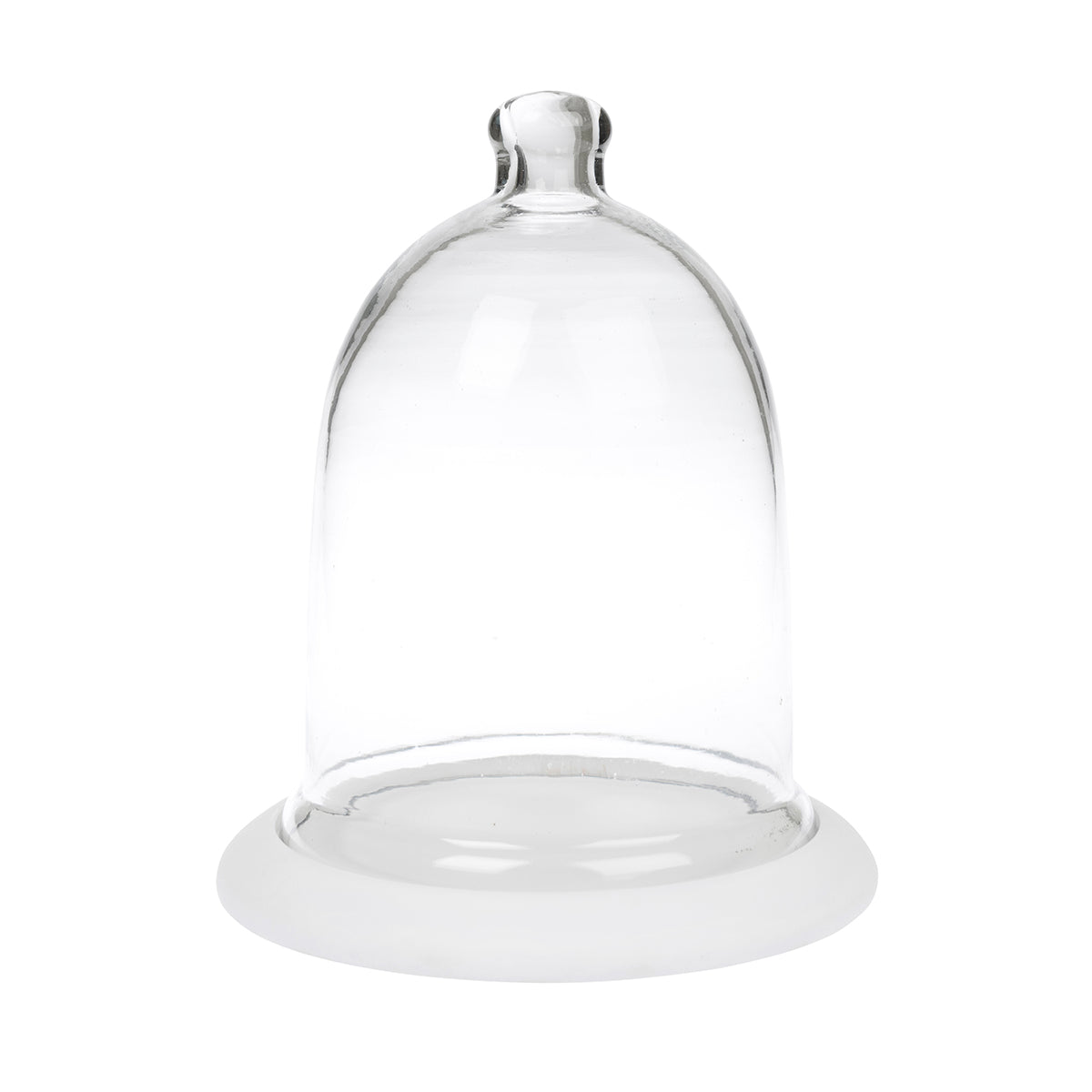 Glass Cloche Display Dome