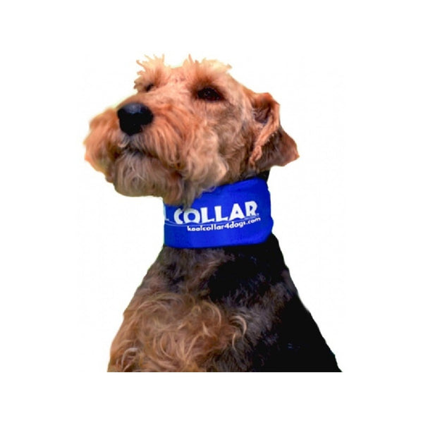 "Kool Collar Color : Blue, Size : 11"" - 17.5"" Small"