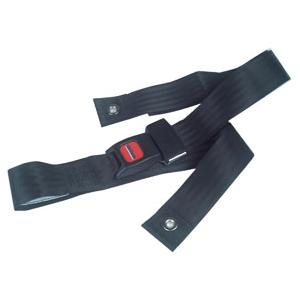 Wheelchair Seat Belt with Auto Style Closure 48""