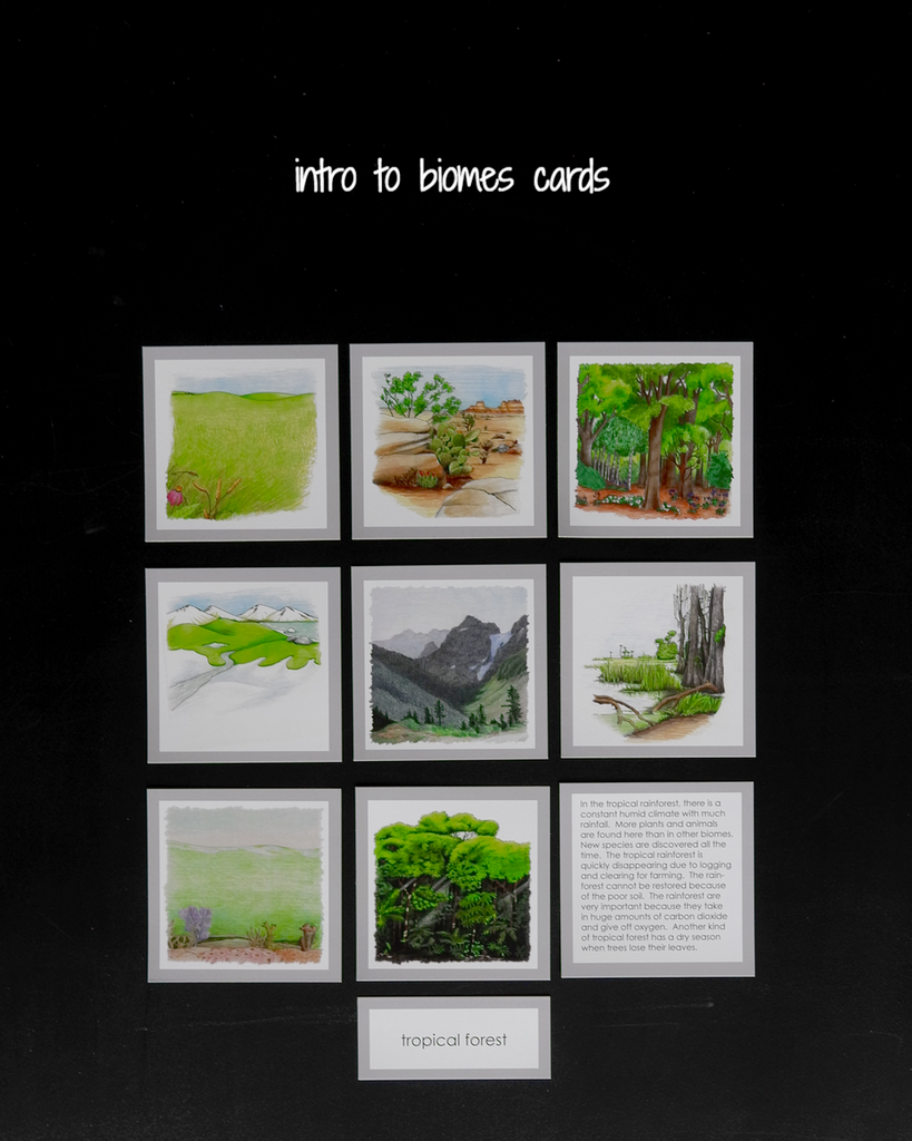 A Introduction to the Biomes with Curriculum-Elementary