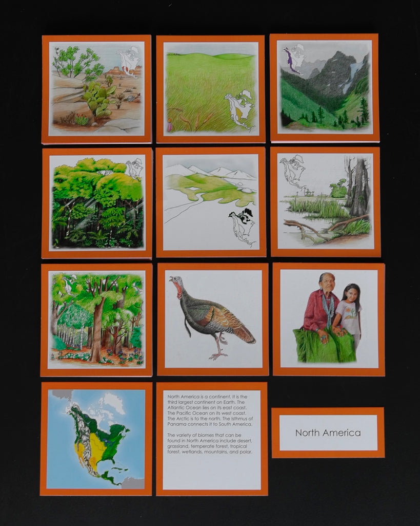 North America Biome Cards-Elementary