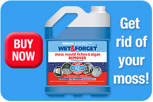 Buy Wet and Forget for Moss Removal