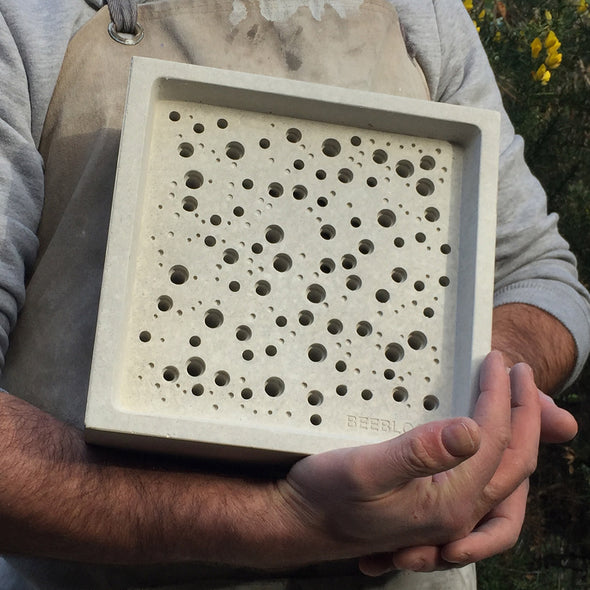 large bees block in hands