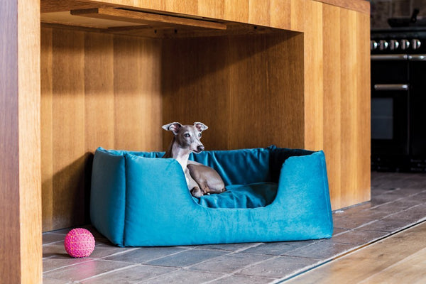 Charley Chau - Luxury Dog Beds & Blankets - Fabric Based