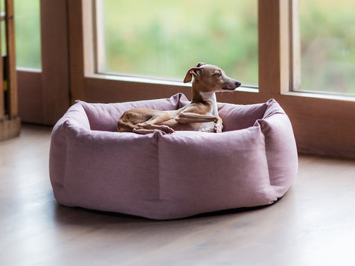 Ducky Donut Dog Bed