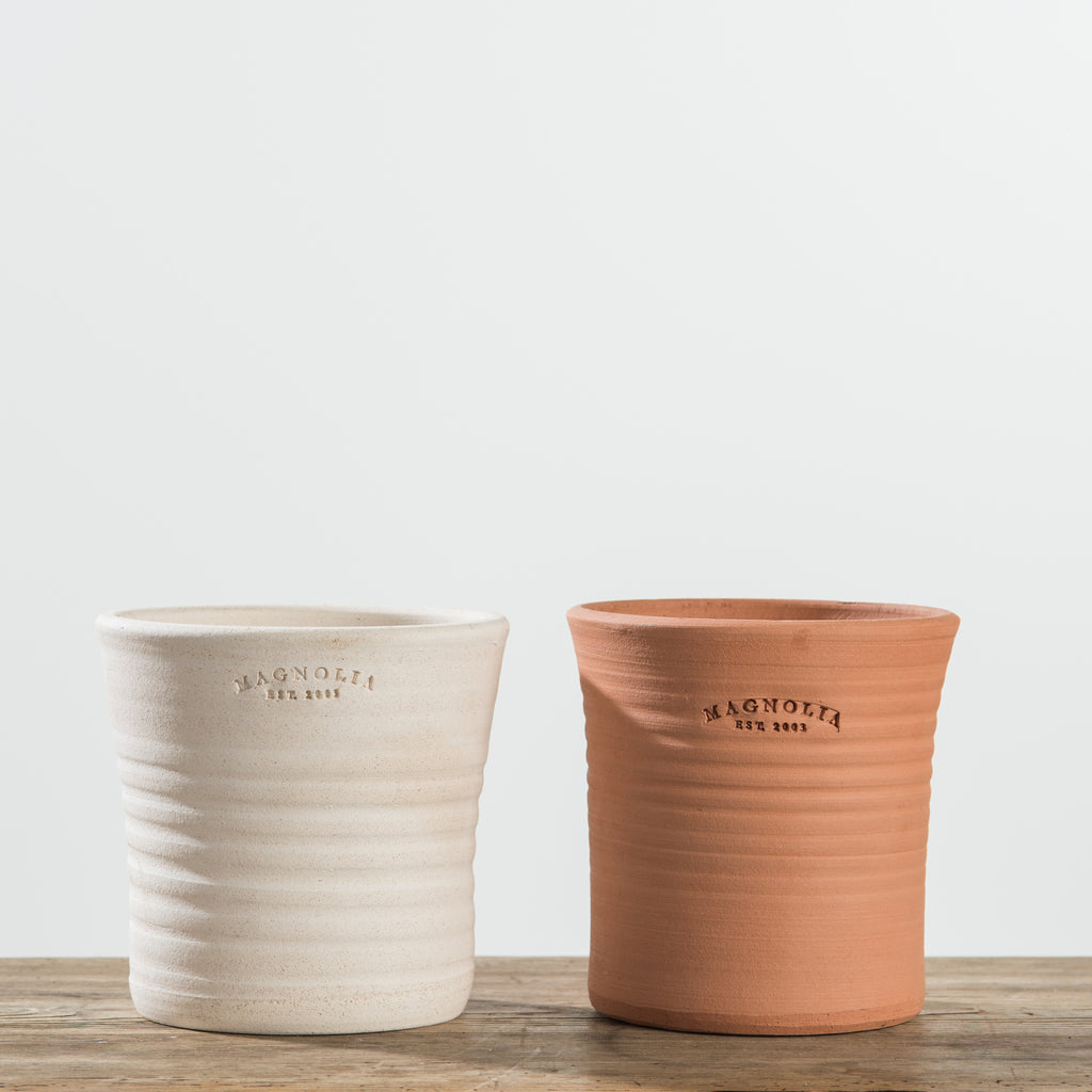 terracotta pots with magnolia established stamp