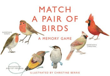 A Memory Game: Match A Pair Of Birds