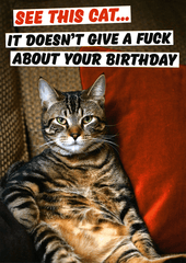 Rude Birthday Cards - Cat Doesn't Give F*ck About Your Birthday