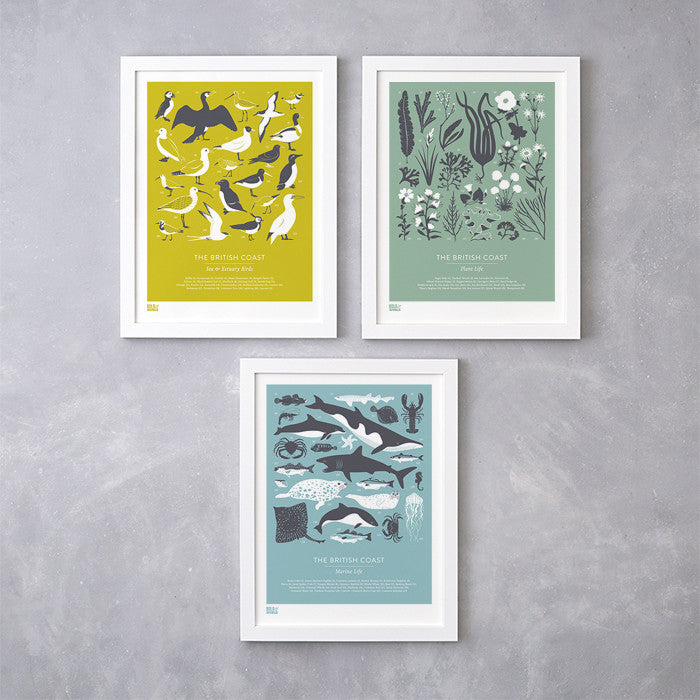 British Coast set of 3 screen prints in yellow, green and blue, featuring birds, marine and plant life. Delivered worldwide