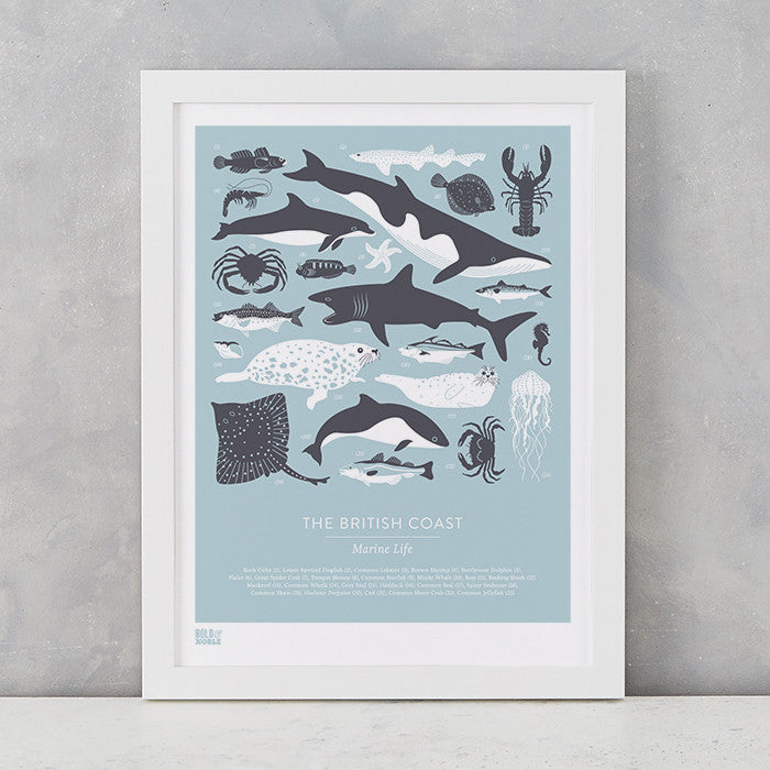 British Coast Marine Animals screen print in duck egg blue, recycled card, delivered worldwide