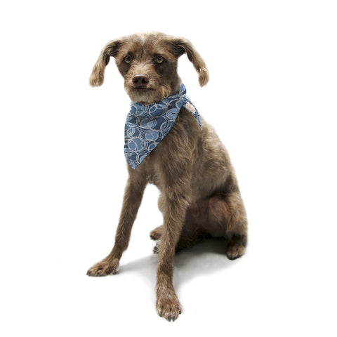 "Julia Grifol ""Simple Circles in Blue"" Pet Bandana - KESS InHouse  - 1"
