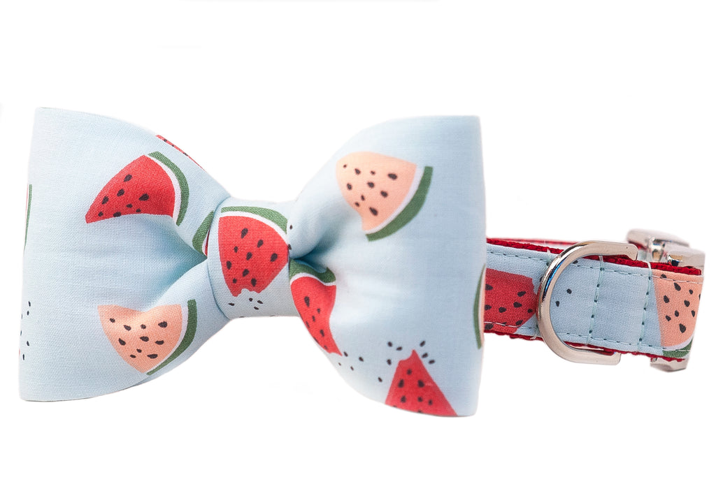 Melon Party Bow Tie Dog Collar- Two Styles