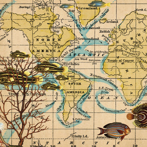 Ocean Currents Map Wall Art by Wendy Gold