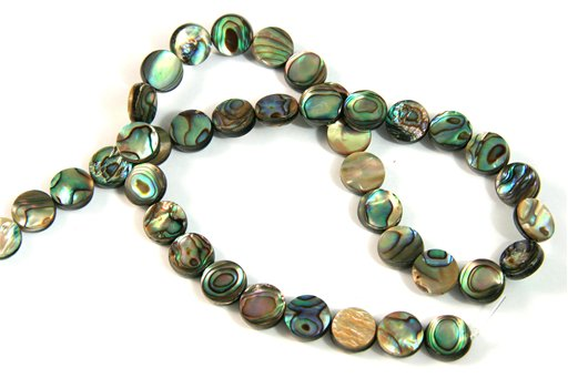 Abalone, 10mm, Coin Shape Beads