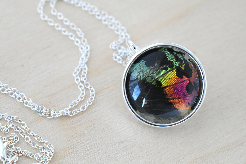 Large Real Sunset Moth Wing Necklace | Rainbow Butterfly Glass Pendant Necklace - Enchanted Leaves - Nature Jewelry - Unique Handmade Gifts