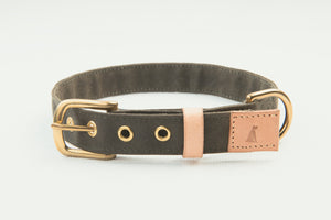 Folk Dog Collar