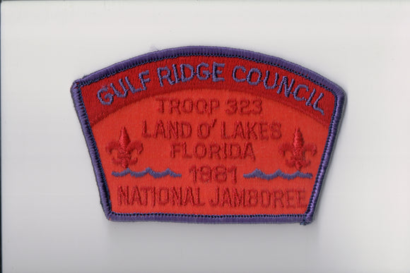 1981 Gulf Ridge C troop 323, Land o' Lakes, FL