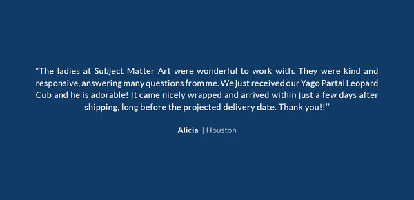 A positive testimonial about the excellent service Subject Matter Art provided, by a client in Houston.