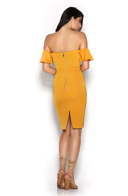 Second Chance Dress - Mango back