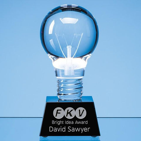 Glass Light Bulb Award
