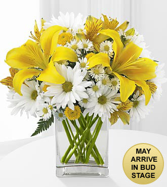 Come Rain or Come Shine Bouquet - Beaudry Flowers