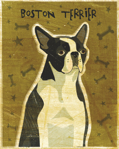 John W. Golden - Boston Terrier