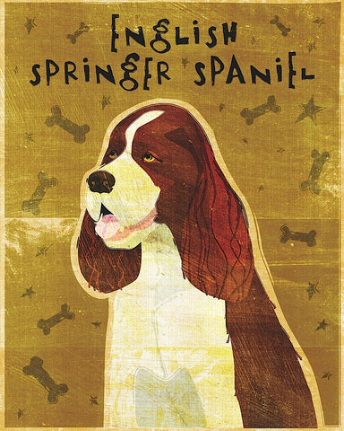 John W. Golden - English Springer Spaniel