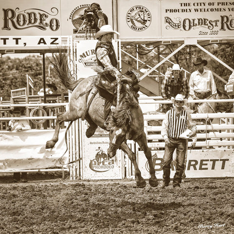 Barry Hart - Rodeo