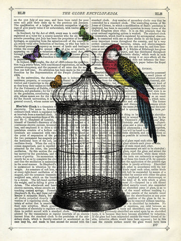 Marion McConaghie - Bird Cage and Parrot