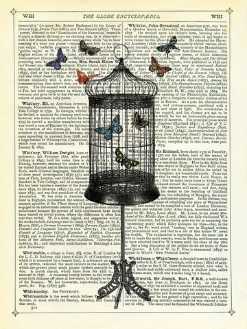 Marion McConaghie - Bird Cage & Butterflies