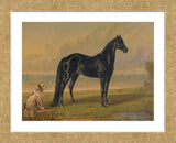 America's Renowned Stallions, c. 1876 I (Framed)