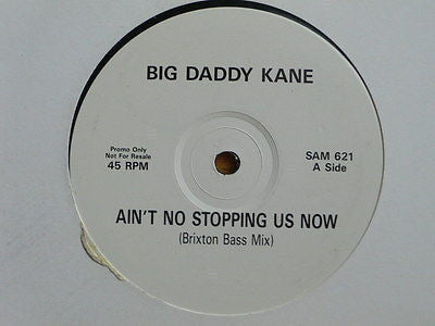 BIG DADDY KANE - Ain't No Stopping Us Now