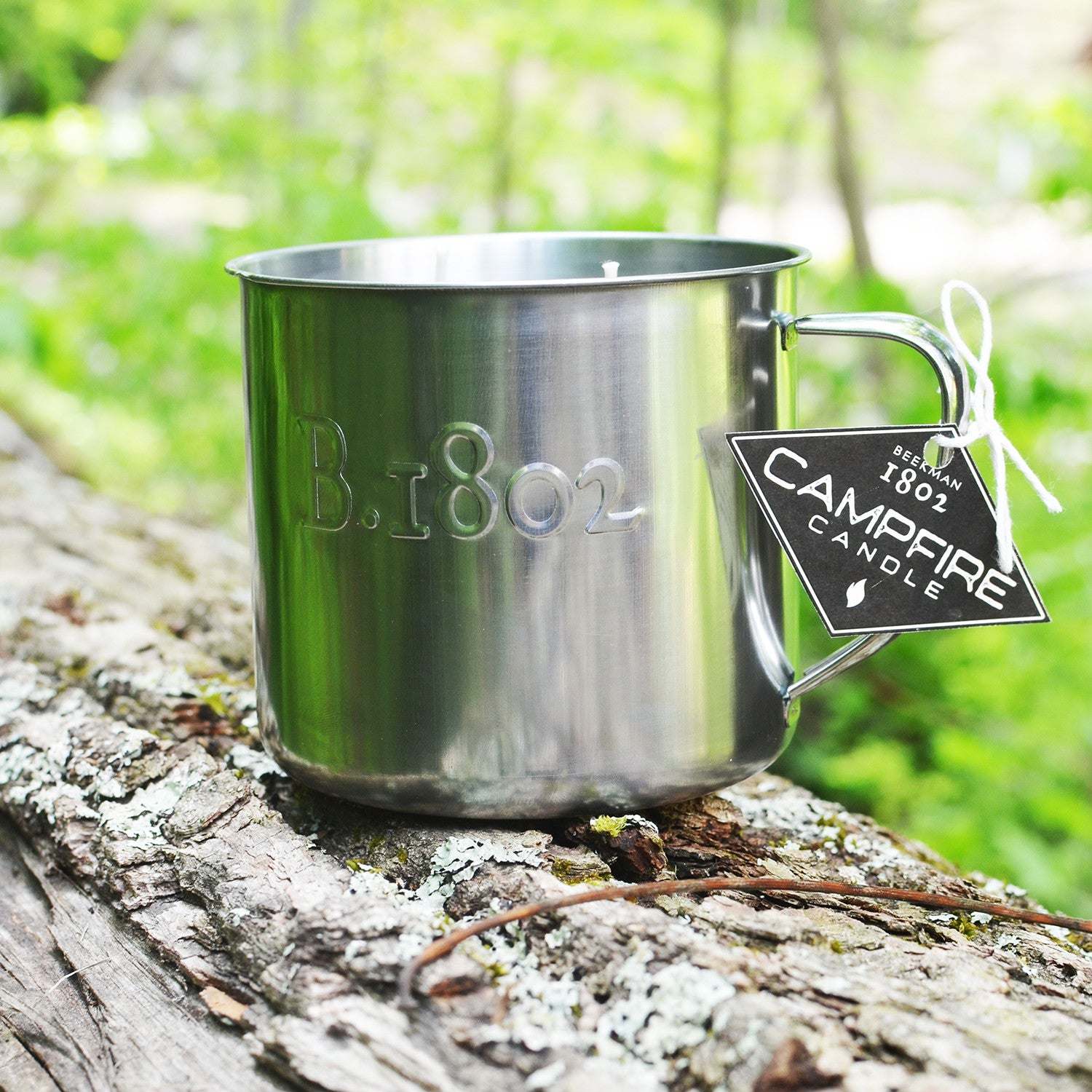 Campfire & Smoke Candle in Switchel Mug