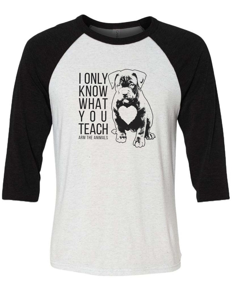 Men's | What You Teach Pittie | 3/4 Sleeve Raglan