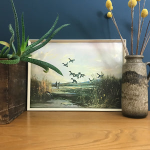 Vintage 1960s Ducks Framed Picture