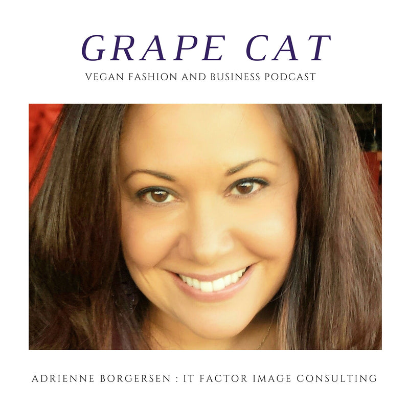 Interview with Adrienne Borgersen, Owner of It Factor Image Consulting