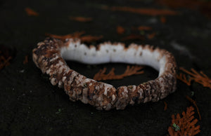Naturally Shed Elk Antler Crown Bangle