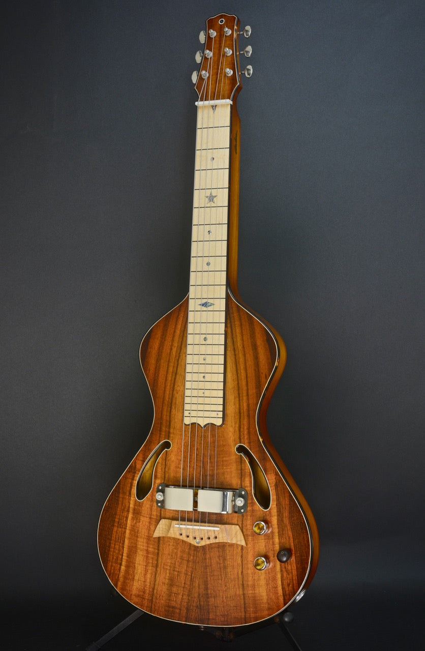 2018 Asher Dual Tone Semi Acoustic Lap Steel Guitar with Vintage 60s Horseshoe magnet and Asher Coil, #1051