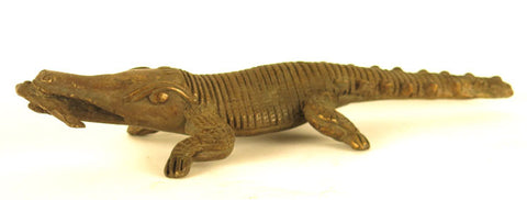 African Bronze Crocodile with a Fish