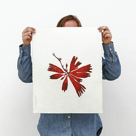 Superfolk | Dilisk Print