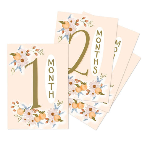 Clementine Monthly Baby Milestone Cards - Digital Download